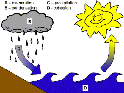 All Water Cycle Diagrams are Wrong | safedrinkingwaterdotcom